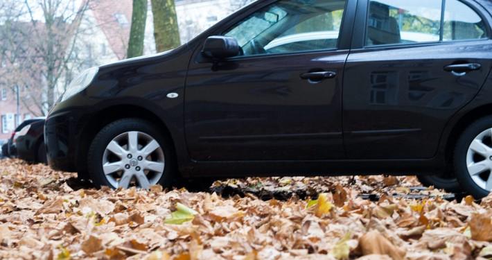 Betonfertiggaragen schützen im Herbst