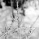 Frostschutz, Schmelzwasserschutz, Glätteschutz